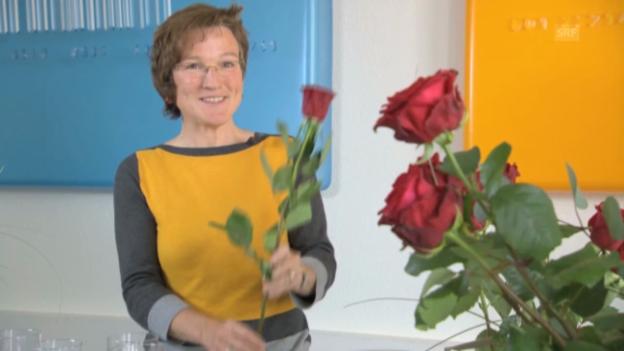 Video «Rosenpflege: Tipps von der Expertin» abspielen