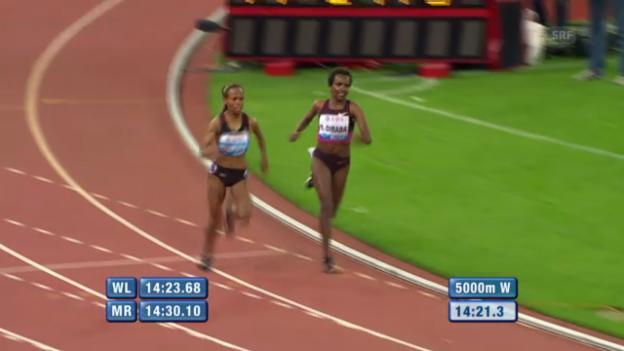 Video «5000 m der Frauen: die letzte Runde («sportlive»)» abspielen