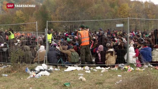 Video «Grenzzaun auch für Österreich?» abspielen