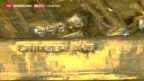 Video «Wo ist das Gold» abspielen