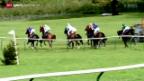 Video «Pferderennen: Maienfeld» abspielen