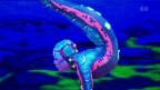 Video «Cirque du Soleil: «Totem»-Premiere in der Schweiz» abspielen