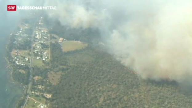 Video «Hitzewelle und Buschfeuer in Australien» abspielen