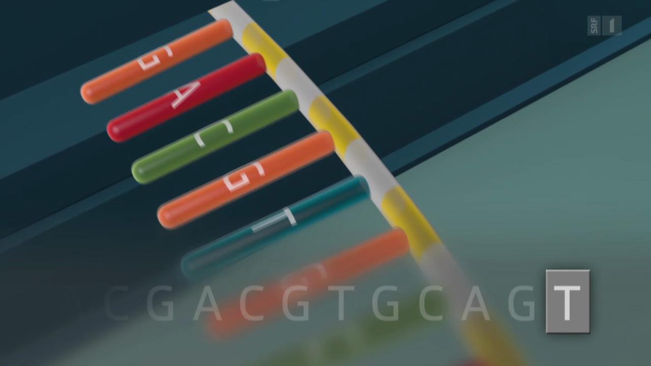 DNA als Datenspeicher: Spinnerei oder schon bald Wirklichkeit?