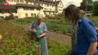 Video «Bäuerinnenschule am Ende» abspielen