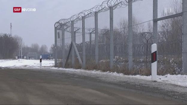 Video «Internierungslager in Ungarn» abspielen