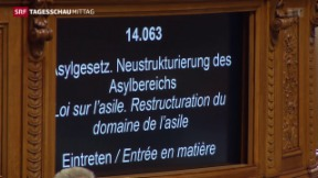 Video «Asyldebatte im Nationalrat» abspielen