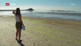 Video «FOKUS: Eine englische Stadt will sich vom Plastik befreien» abspielen