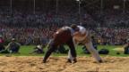Video «ESAF: 8. Gang, Zwyssig vs. Gnägi» abspielen