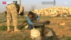 Video «Gewalt geht weiter; Brahimi auf Friedensmission in Russland» abspielen