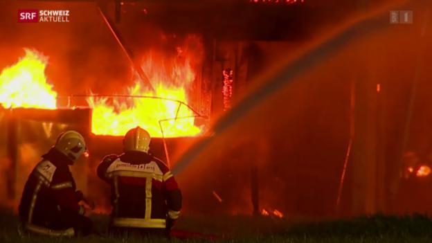 Video «Schweiz aktuell vom 12.08.2015» abspielen