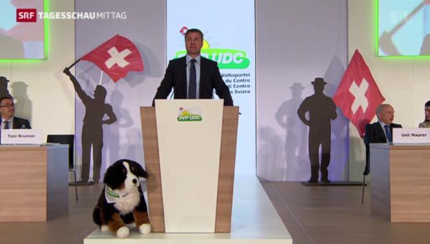 Video «SVP-Delegierte tagen in Freiburg» abspielen