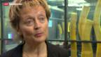 Video «Unternehmenssteuerreform» abspielen