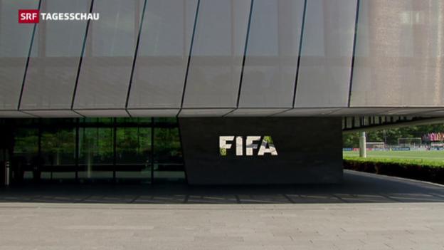 Video «Der Reformplan der Fifa» abspielen