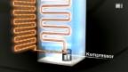 Video «Der Energiespar-Trick für Kühlschränke» abspielen