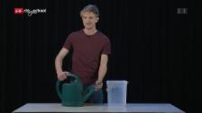 Link öffnet eine Lightbox. Video «Einfach Physik!» - Giesskanne und Licht (2/5) abspielen