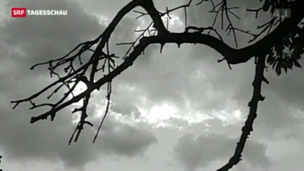 Video «Suizidrate in der Schweiz» abspielen