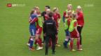 Video «Dänemark schafft Überraschung gegen Deutschland» abspielen