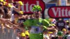 Video «Sprint-Sieg von Sagan in Albi («sportaktuell»)» abspielen