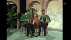 Video «Schwyzerörgeli-Duo Iten-Grab» abspielen