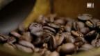 Video «Die Kaffee-Nasen» abspielen