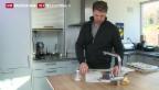 Video «Tessiner in der Deutschschweiz – eine Erfolgsgeschichte» abspielen