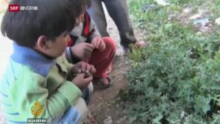 Video «FOKUS: Grausame Aushungerungs-Taktik» abspielen