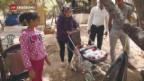 Video «Prekäre Lage für Flüchtlinge in Griechenland» abspielen