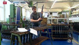 Video «Lockerung für Waffenexporte» abspielen