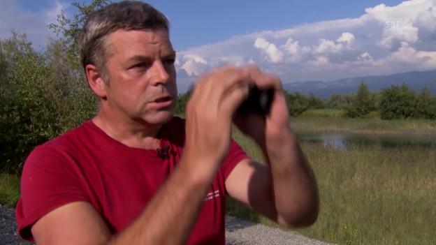 Video «Hobby-Ornithologe Gregor Fiechter erklärt, wie der Feldstecher richtig eingestellt wird.» abspielen