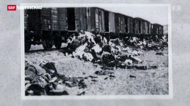 Historiker zur späten Veröffentlichung der Holocaust-Bilder