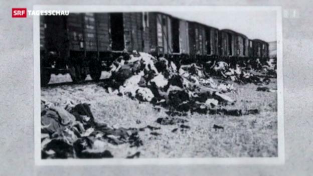 Video «Historiker zur späten Veröffentlichung der Holocaust-Bilder» abspielen