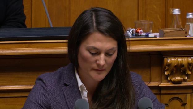 Video «Erklärung von GLP-Fraktionschefin Moser» abspielen