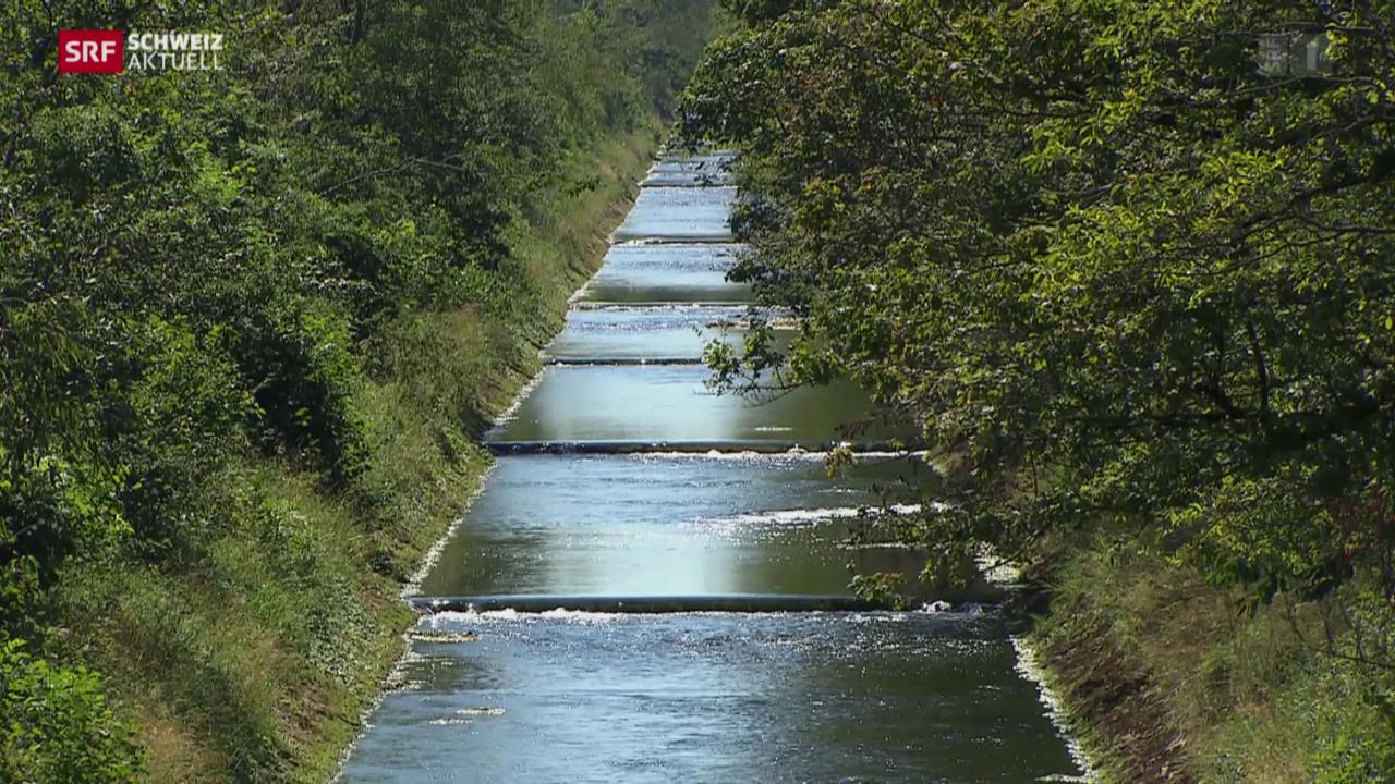 Wasserbezug für die Landwirtschaft im Kanton Solothurn rationiert