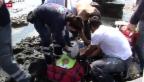 Video «BDP-Grunder will 50 000 Flüchtlinge aufnehmen» abspielen