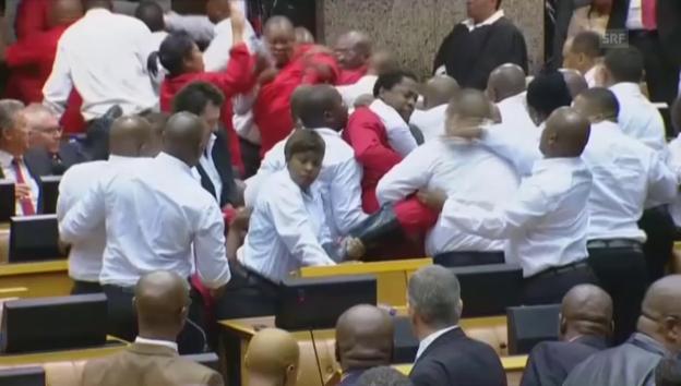 Video «Südafrikas Opposition boxt sich durchs Parlament» abspielen