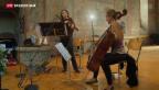 Video «Seltene Kombination am Menuhin Festival» abspielen