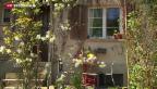 Video «Platz für Wohnungen gäbe es genug» abspielen