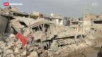 Video «Bürgerkrieg in Syrien» abspielen