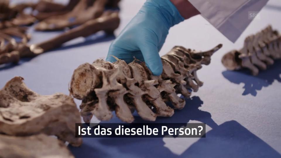 Die Knochenfrau oder wie man am Skelett ermittelt
