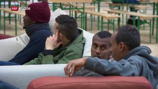 Video «Sozialhilfe für Asylbewerber» abspielen