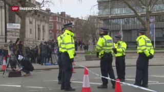 Video «Anschlag in London: Weitere Festnahmen » abspielen