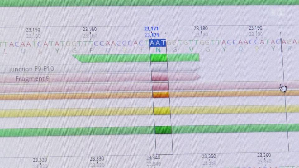 Was bewirken die Gencodeänderungen an Stelle 501?