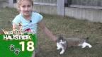 Video «Livia und ihre «alte Dame» Gina» abspielen