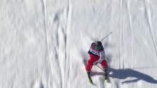 Video «Zusammenfassung Slopestyle Final (13.2.2014)» abspielen