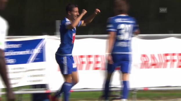 Video «Luzern behält in Naters die Oberhand» abspielen