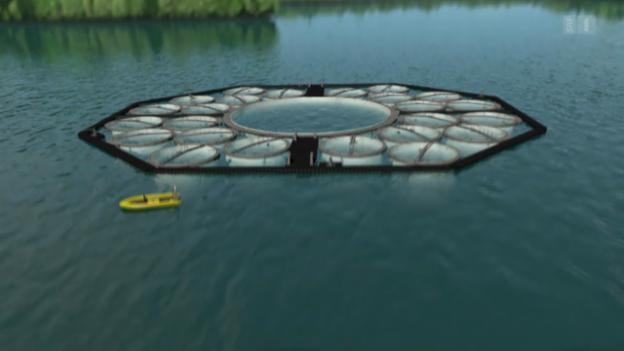 Video «Klimawandel in monumentalen Reagenzgläsern» abspielen