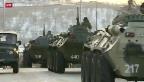 Video «Janukowitsch sucht Schutz in Russland» abspielen