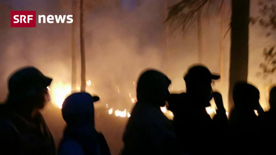 In Russland brennen Millionen Hektaren Wald