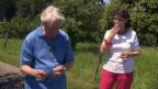 Video «Wettbewerbsauflösung mit Emil und Niccel» abspielen